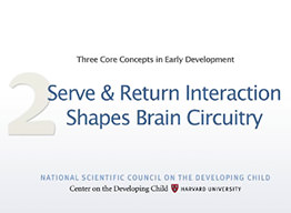 Serve & Return Interaction Shapes Brain Circuitry